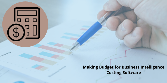 A Guide to Making Budget for Business Intelligence Costing Software In 2021
