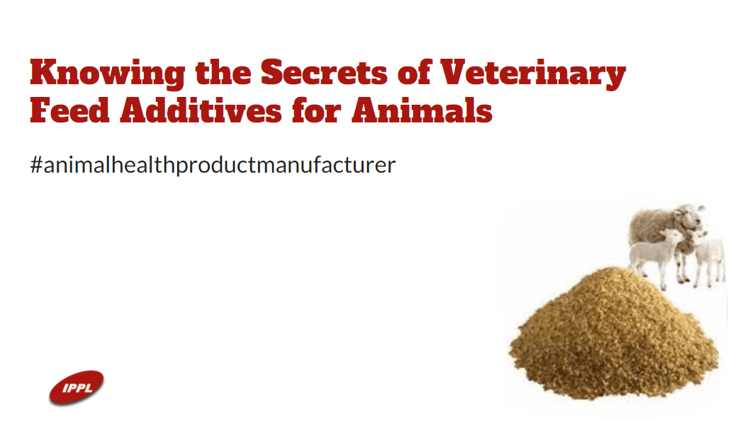 Knowing the Secrets of Veterinary Feed Additives for Animals